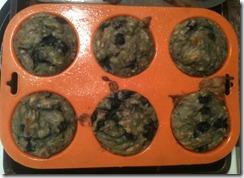 primal blueberry muffins