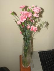 FBF Flowers